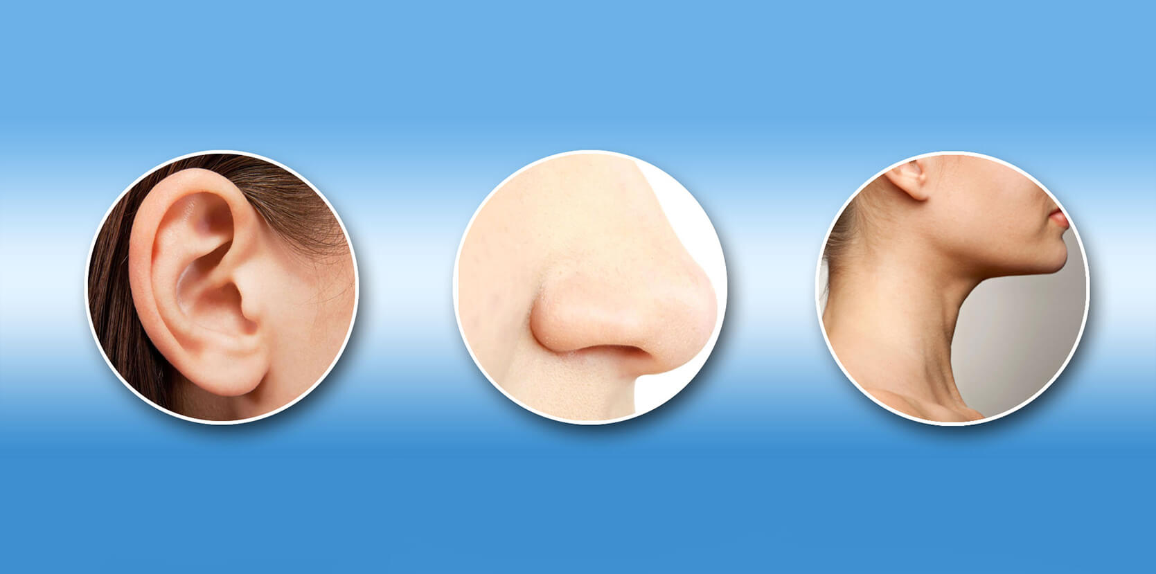 basic information on common disorders of the ear, nose and throat